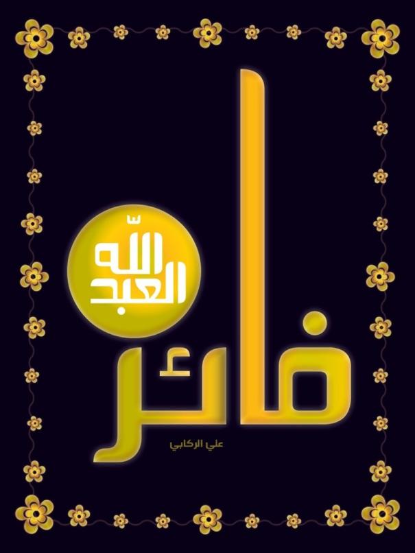 faiz_2011