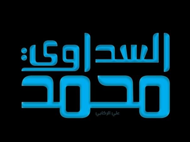 mohammad_saddawi_2011_2