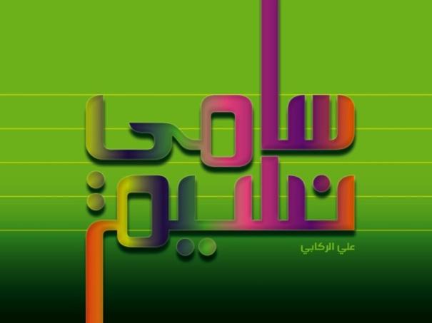 saminasim_2011_2